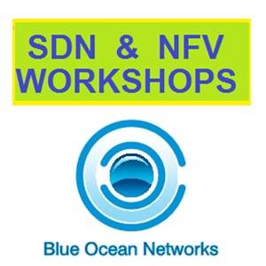 Workshops on Software Defined Networking (SDN) and Network Function Virtualisation (NFV)