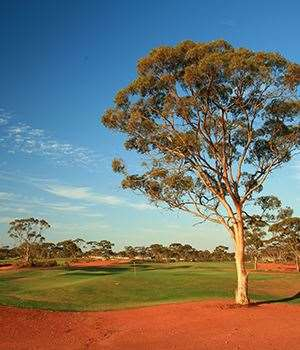Kalgoorlie GC. PHOTO:Brendan James