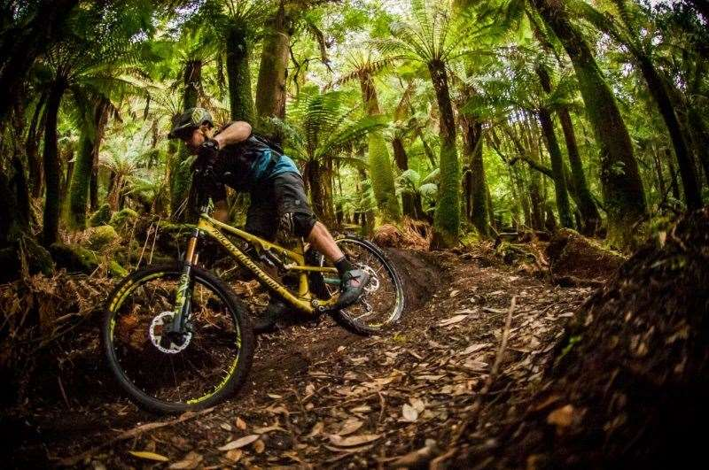 Tasmania Shimano Adventure road trip. Photo: Damian Breach