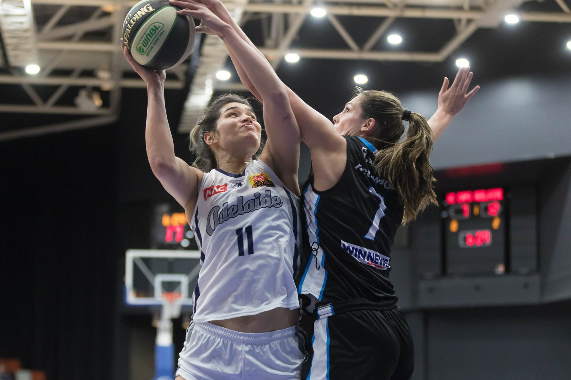 5386902c7ce Pic special  WNBL Capitals vs Lightning - The Women s Game - For the ...