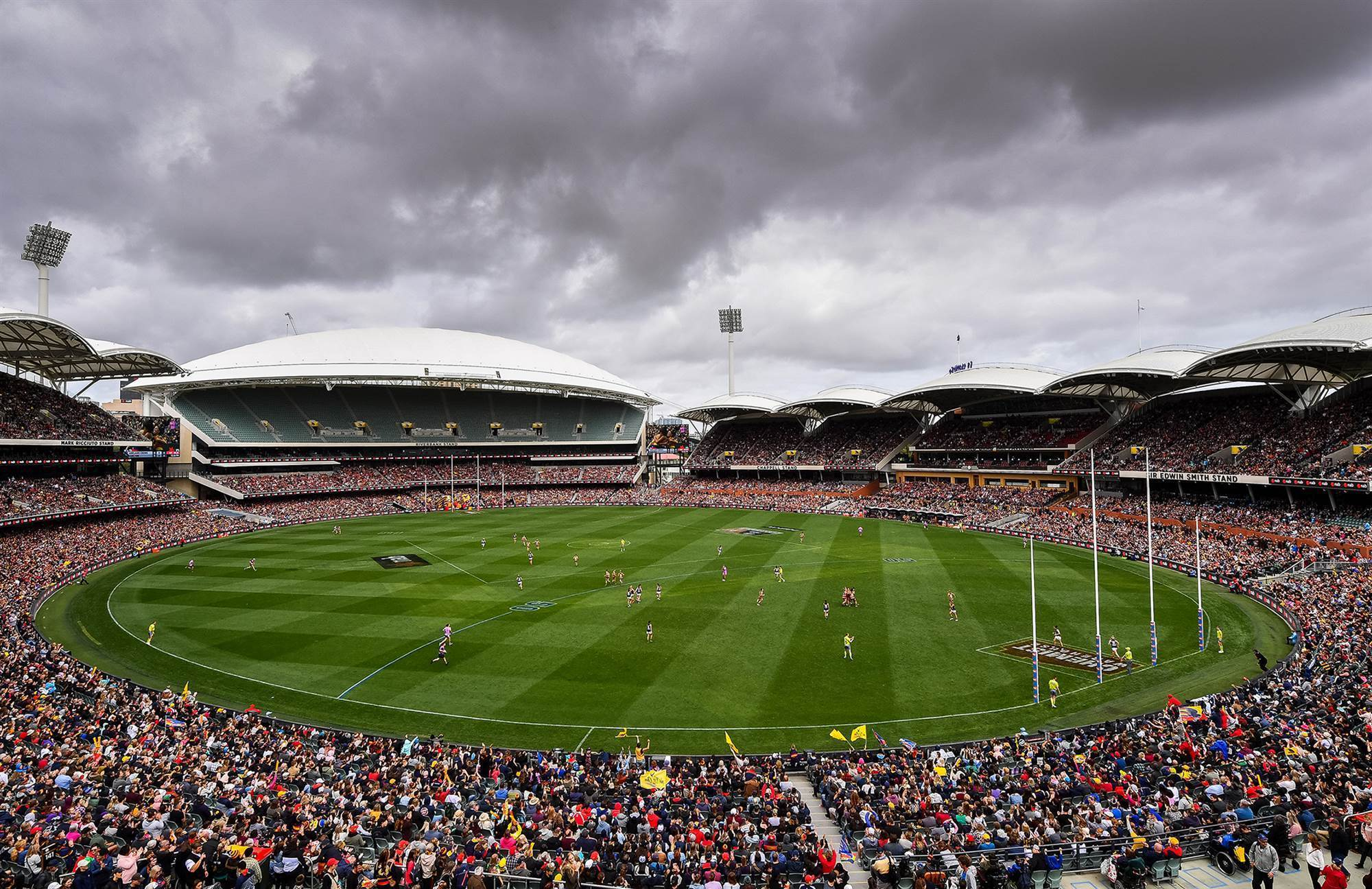 Pic special: 2019 AFLW Grand Final - AFL - The Women's ...