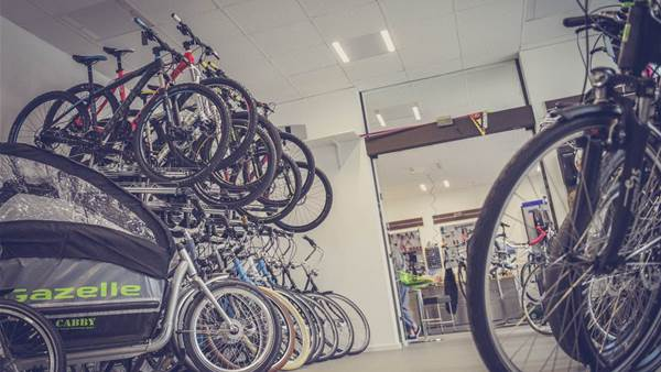 Could you pick just one bike for the rest of your life?
