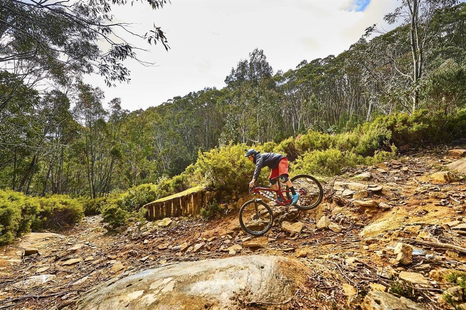 Mountain biking Mt Baw Baw's hidden gems
