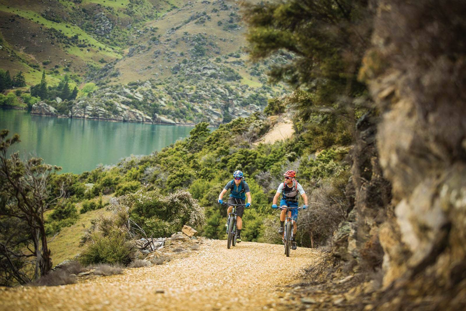 The Golden Trails of Central Otago