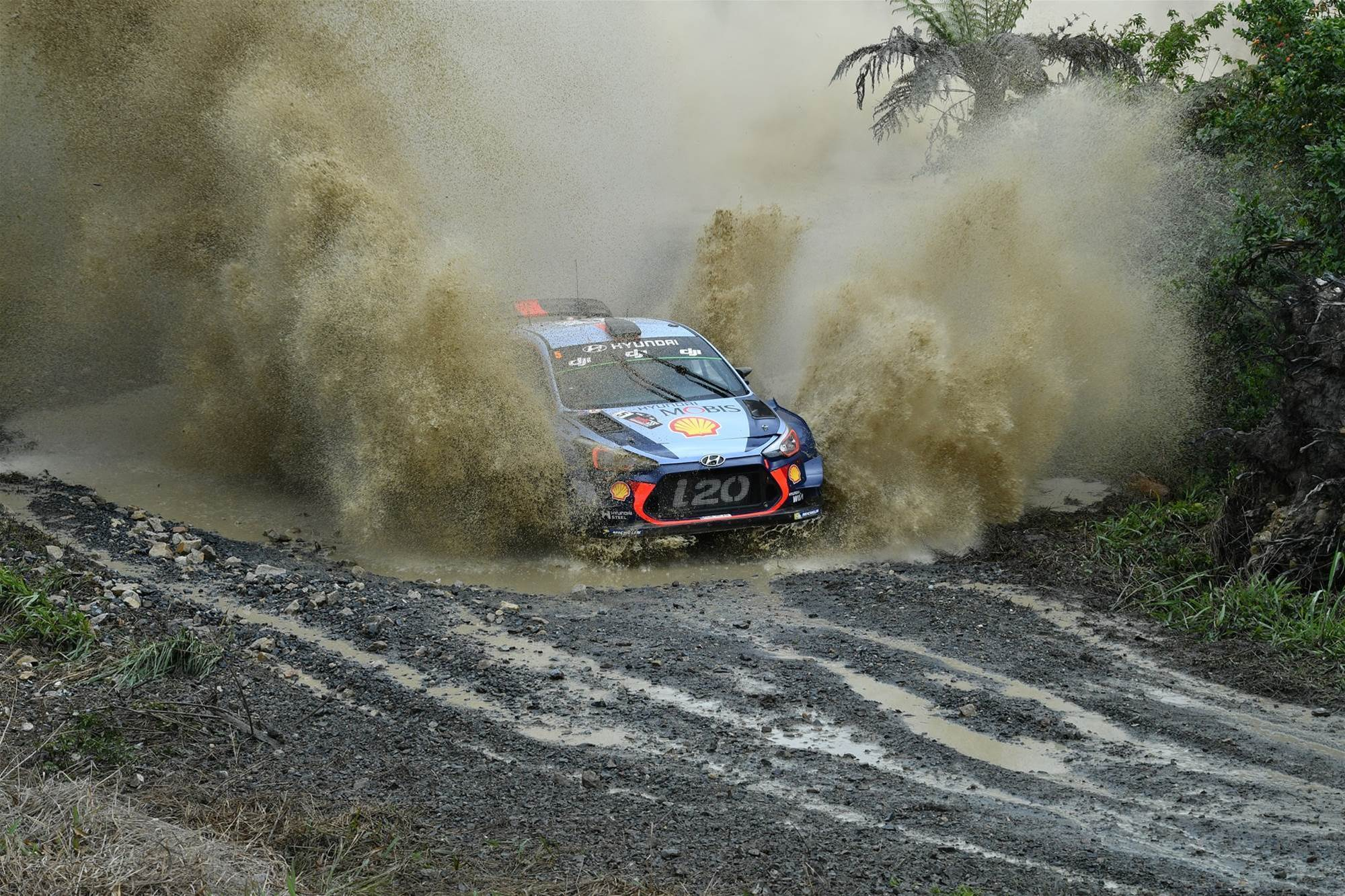 Pic gallery: Coffs Harbour WRC