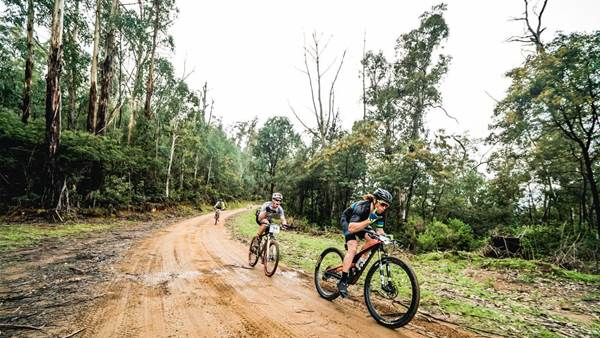 Adams and McInerney win 26th Mitta to Mt Beauty