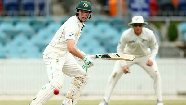 The case for Cameron Bancroft