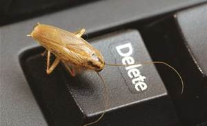 Get bug hunting: Mozilla extends bounty to apps