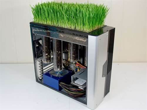 Bio PC adds a touch of greenery to the office computer