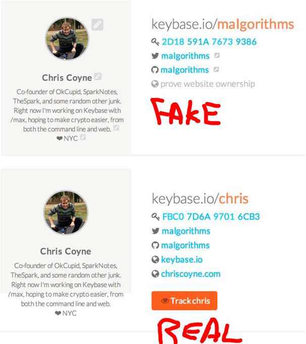 The fake profile using Coyne's Twitter handle
