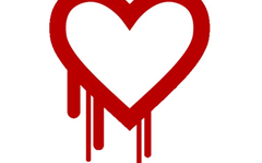 Heartbleed coder: bug in OpenSSL was an honest mistake