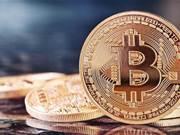 Bitcoin hits record $3,000, then drops