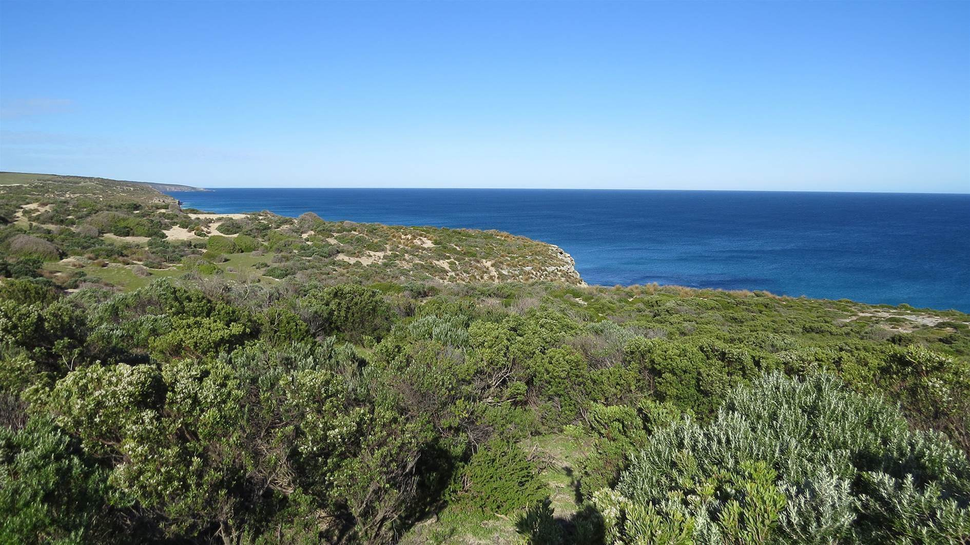Spectacular Kangaroo Island course gets the green light