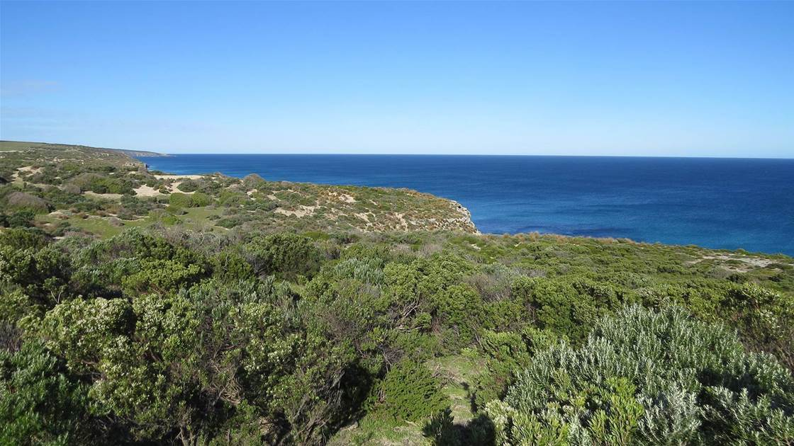 Spectacular Kangaroo Island course gets the green light