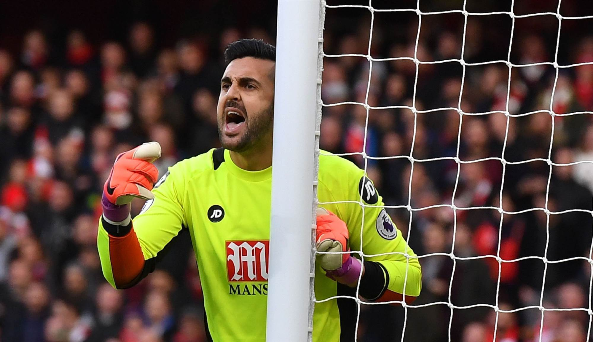 Federici's Forest move collapses