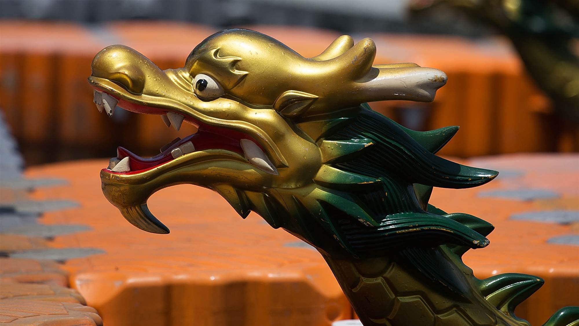 Whatever floats your dragon boat