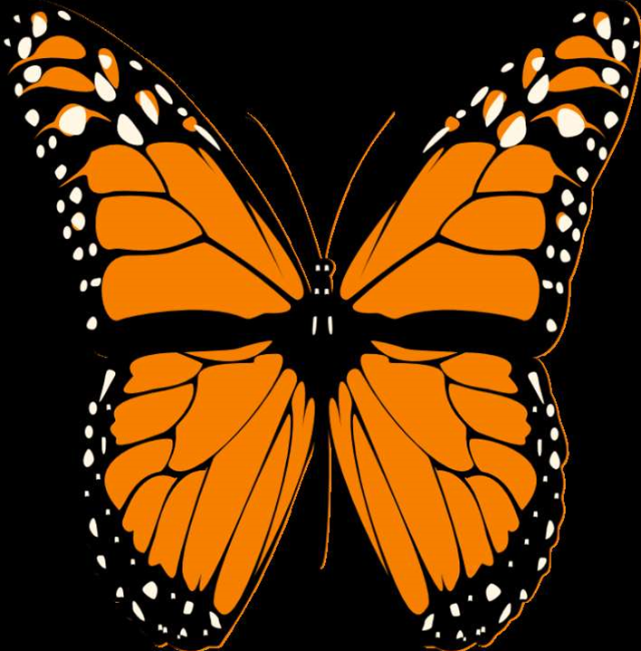 Butterfly botnet morph is bigger, badder than Mariposa