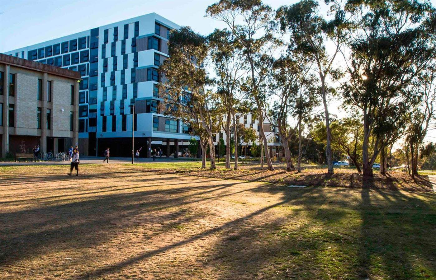 Canberra Uni's new chatbots could raise IT tickets