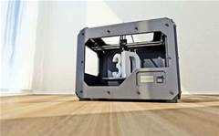 Homegrown 3D print group hits the wall
