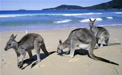 Microsoft award winner rejuvenates Tourism Australia