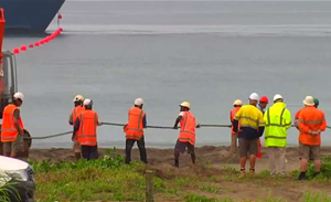 New Pacific cable system to be built