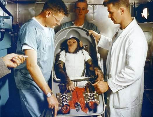 Iran Indefinitely Suspends Plans to Launch a Monkey into Space