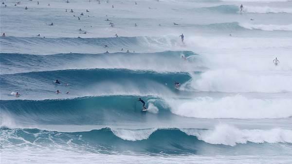 The Gold Coast's Reeking Run
