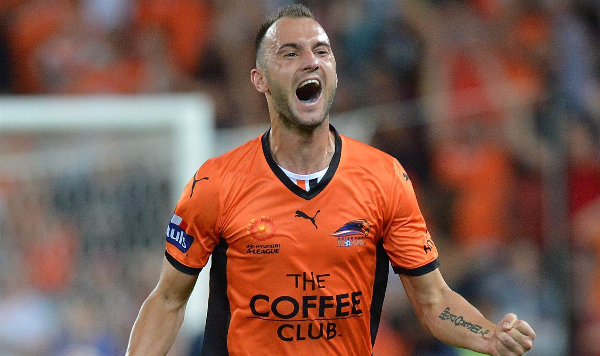 Ivan Franjic returns to Brisbane Roar