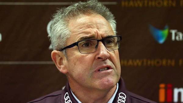 Lions announce new coach