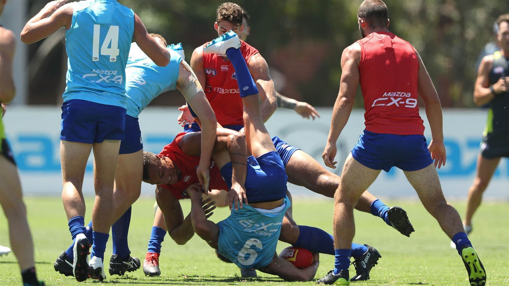 North Melbourne teammates come to blows
