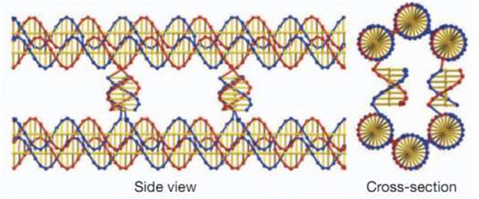 Structural Self-Replication Based on DNA Could Create New Materials