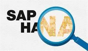 SAP CEO: HANA is the future