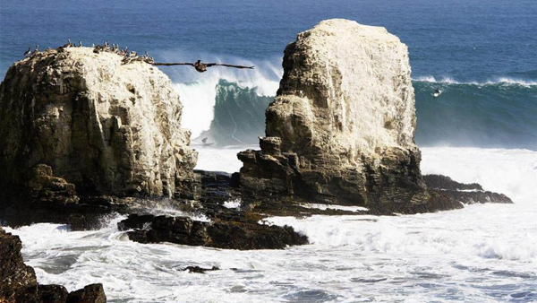 Big Wave Tour Preview: Punta De Lobos