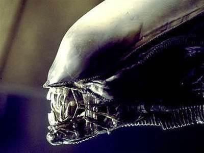 Xen warns of new Venom-like vulnerability