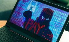First Australian business hit by Goldeneye ransomware