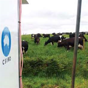 CSIRO eyes microwave backhaul market