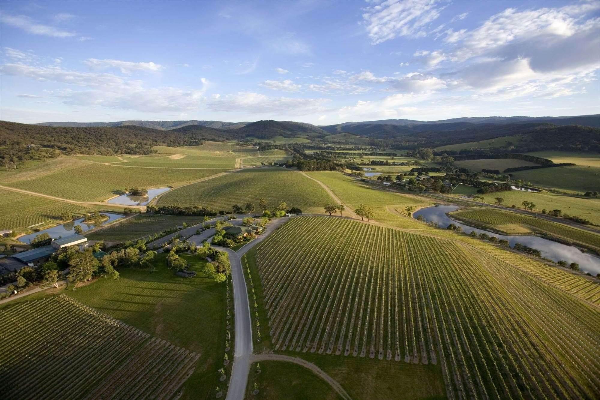 Why De Bortoli Wines built 'Facebook for growers'