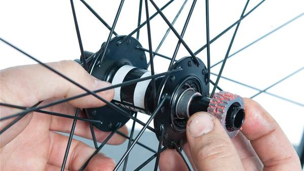 How to service a DT Swiss freehub