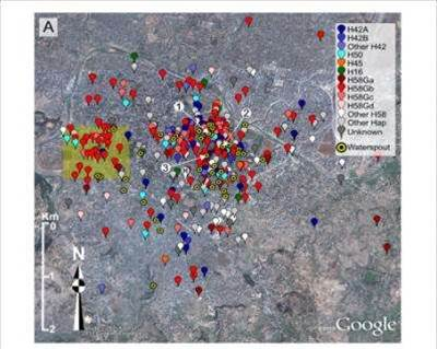 Tracking Typhoid Using Google Earth