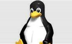 Linux Australia readies conference code of conduct