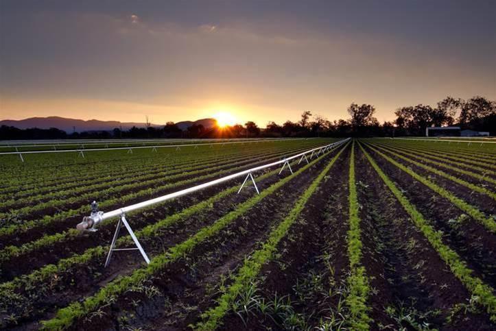 LoRaWAN network for farmers announced