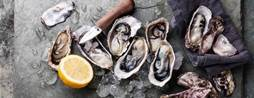 Transforming oyster farming with IoT