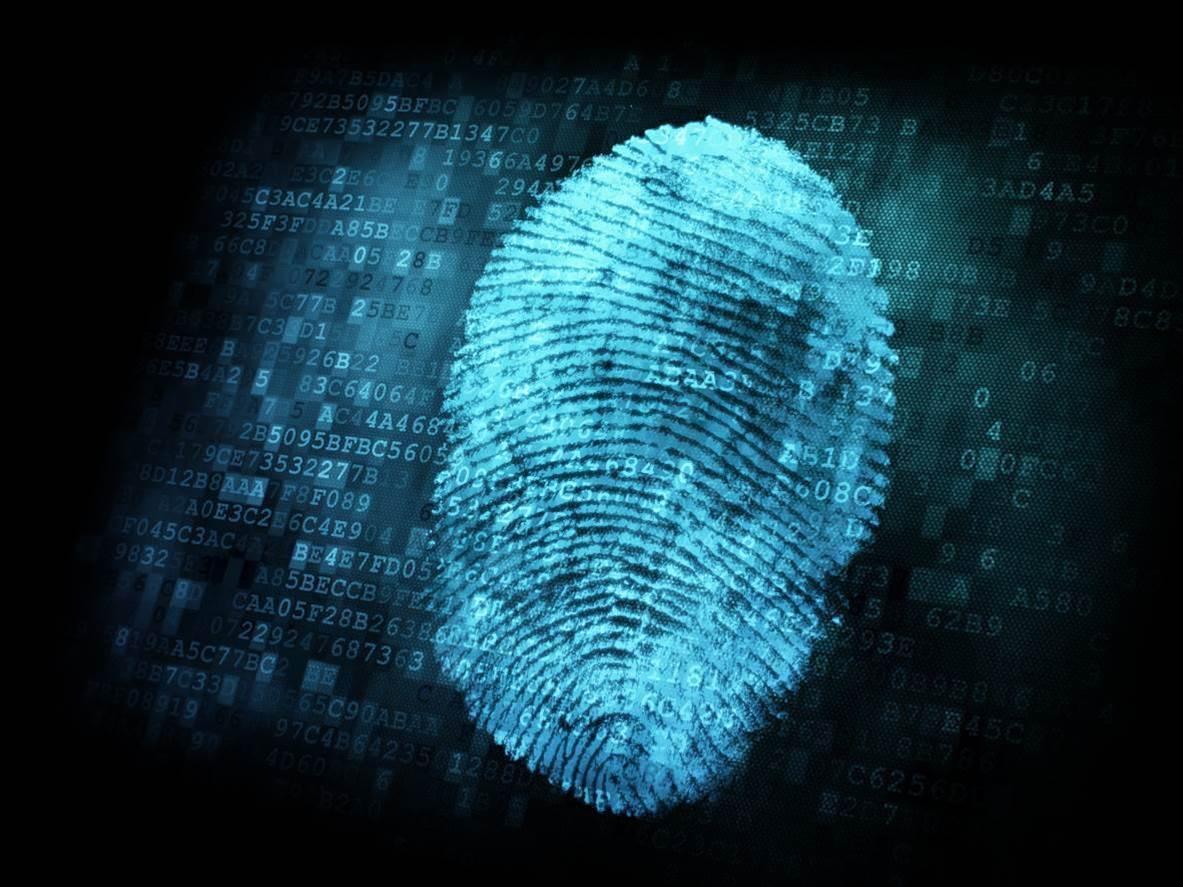 Accenture, Microsoft build blockchain-based digital ID network