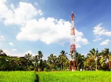 Greens target mobile tower emission audits