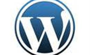 WordPress recovers after massive DDoS attack