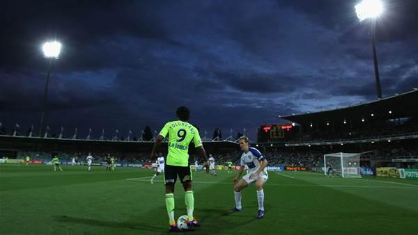 'Tasmania ripe for expansion'