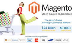 Update your Magento online store before someone checks out your data