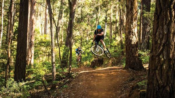 PTR: Margaret River's compartment 10 trails