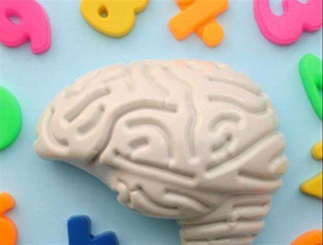 Mine is Bigger than Yours: Section of the Brain May Hold Key to Disorders