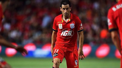 Cirio: Adelaide must unite